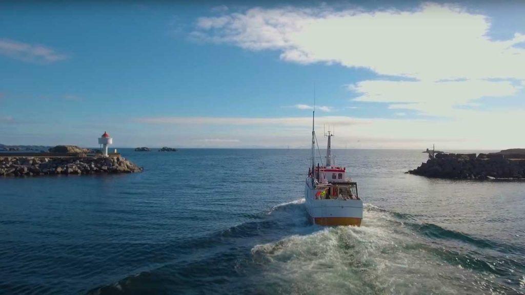 Olje eller Fisk - Lofoten, Vesterålen og Senja