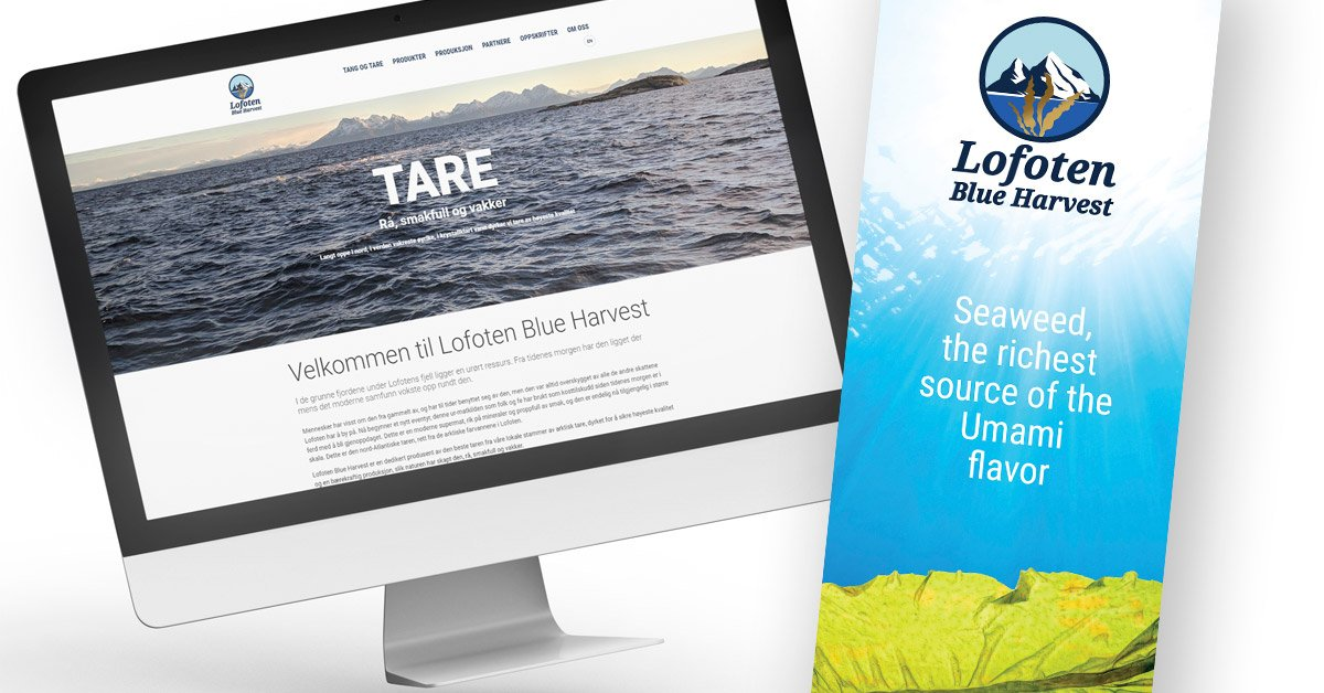 Nettside Lofoten Blue Harvest